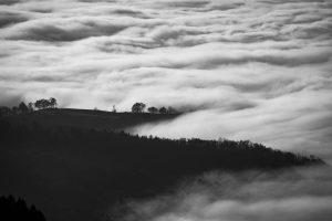 photo-blanco y negro
